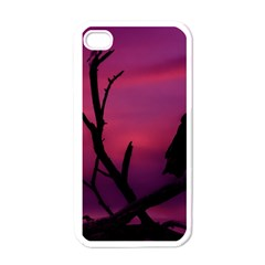 Vultures At Top Of Tree Silhouette Illustration Apple Iphone 4 Case (white) by dflcprints
