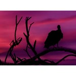 Vultures At Top Of Tree Silhouette Illustration Heart Bottom 3D Greeting Card (7x5) Back