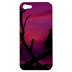 Vultures At Top Of Tree Silhouette Illustration Apple Iphone 5 Hardshell Case by dflcprints