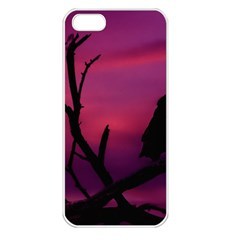 Vultures At Top Of Tree Silhouette Illustration Apple Iphone 5 Seamless Case (white) by dflcprints