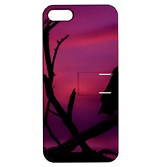 Vultures At Top Of Tree Silhouette Illustration Apple Iphone 5 Hardshell Case With Stand by dflcprints