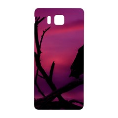Vultures At Top Of Tree Silhouette Illustration Samsung Galaxy Alpha Hardshell Back Case by dflcprints
