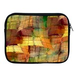 Indian Summer Funny Check Apple iPad 2/3/4 Zipper Cases