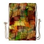 Indian Summer Funny Check Drawstring Bag (Large)