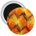 Fall Colors Leaves Pattern 3  Magnets Front