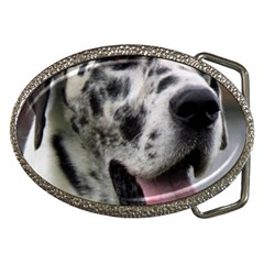 Great Dane harlequin  Belt Buckles by TailWags