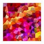 Geometric Fall Pattern Medium Glasses Cloth (2-Side)