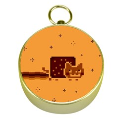 Nyan Cat Vintage Gold Compasses by Onesevenart