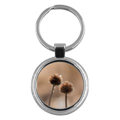 2  Verwelkte Kugeldistel Key Chains (round)  by wsfcow