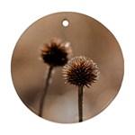 2  Verwelkte Kugeldistel Round Ornament (Two Sides)  Back