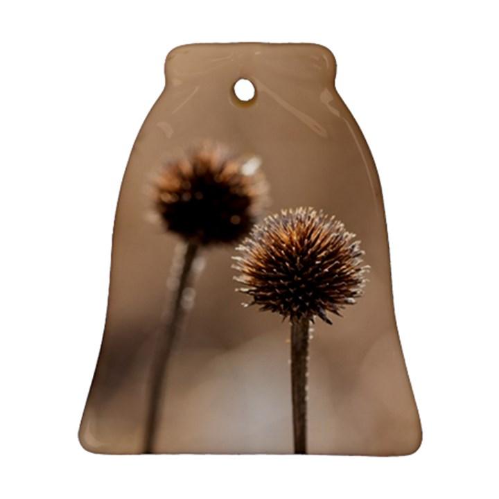 2  Verwelkte Kugeldistel Ornament (Bell)
