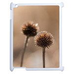 2  Verwelkte Kugeldistel Apple iPad 2 Case (White)