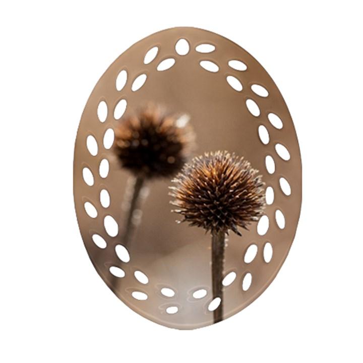 2  Verwelkte Kugeldistel Oval Filigree Ornament (2-Side)