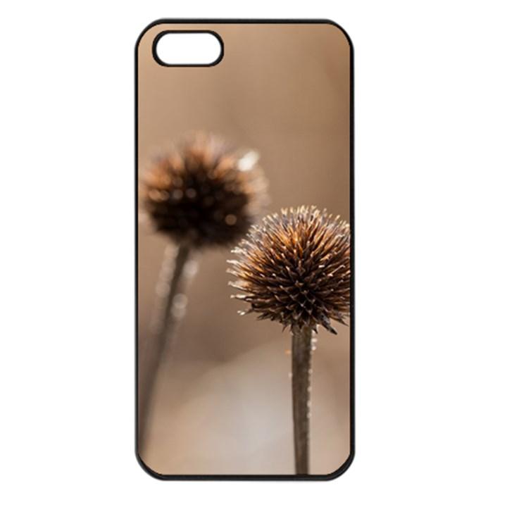 2  Verwelkte Kugeldistel Apple iPhone 5 Seamless Case (Black)