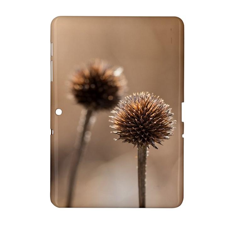 2  Verwelkte Kugeldistel Samsung Galaxy Tab 2 (10.1 ) P5100 Hardshell Case