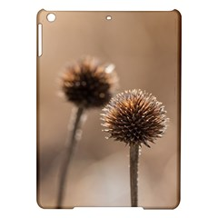 2  Verwelkte Kugeldistel Ipad Air Hardshell Cases