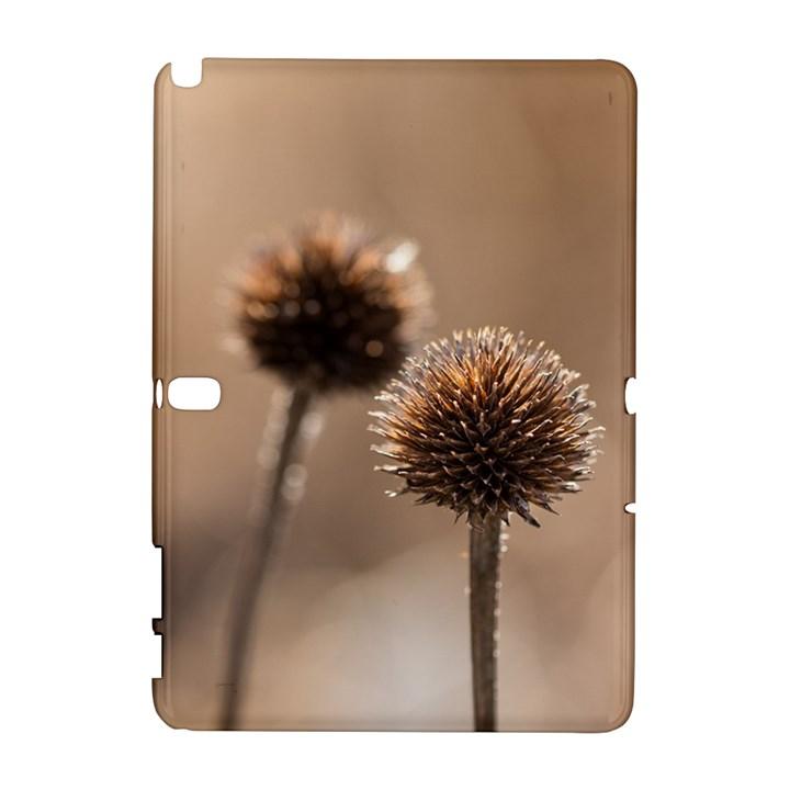 2  Verwelkte Kugeldistel Samsung Galaxy Note 10.1 (P600) Hardshell Case