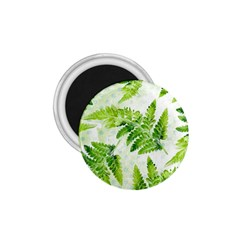 Fern Leaves 1.75  Magnets