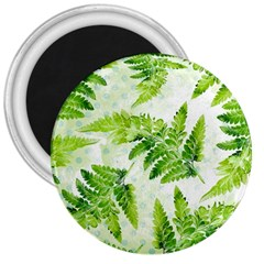 Fern Leaves 3  Magnets