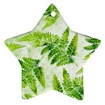 Fern Leaves Ornament (Star)  Front