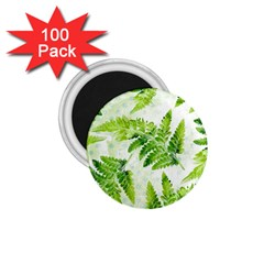 Fern Leaves 1.75  Magnets (100 pack)