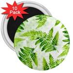 Fern Leaves 3  Magnets (10 pack)
