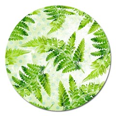 Fern Leaves Magnet 5  (Round)