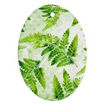 Fern Leaves Oval Ornament (Two Sides) Front