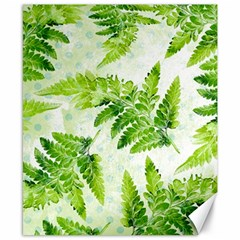Fern Leaves Canvas 8  X 10  by DanaeStudio