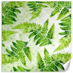 Fern Leaves Canvas 12  x 12