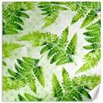 Fern Leaves Canvas 12  x 12