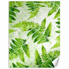 Fern Leaves Canvas 12  x 16