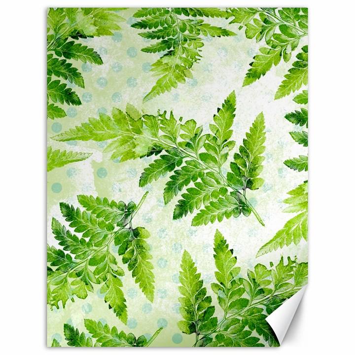 Fern Leaves Canvas 12  x 16