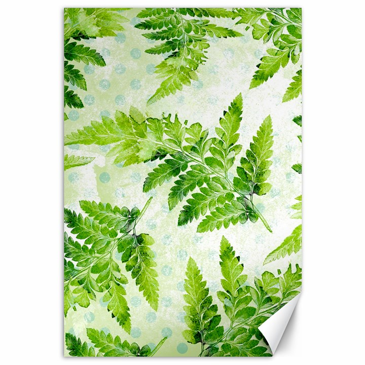 Fern Leaves Canvas 12  x 18