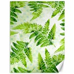 Fern Leaves Canvas 36  x 48   48 x36 Canvas - 1
