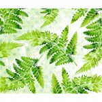 Fern Leaves Deluxe Canvas 14  x 11  14  x 11  x 1.5  Stretched Canvas