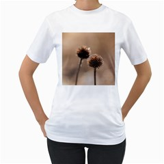 Withered Globe Thistle In Autumn Macro Women s T-Shirt (White) (Two Sided)