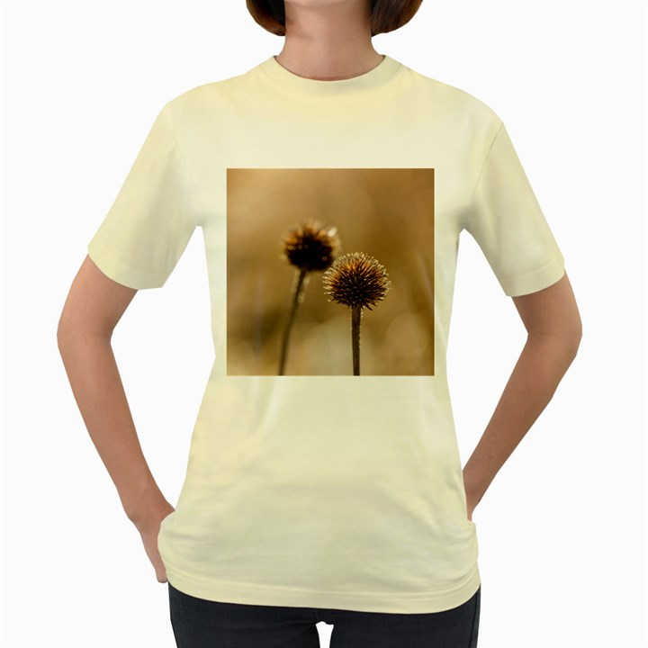 Withered Globe Thistle In Autumn Macro Women s Yellow T-Shirt