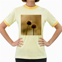 Withered Globe Thistle In Autumn Macro Women s Fitted Ringer T-Shirts