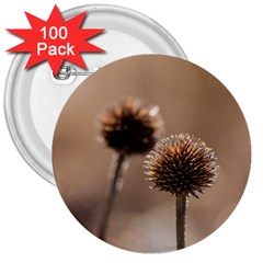 Withered Globe Thistle In Autumn Macro 3  Buttons (100 Pack)  by wsfcow