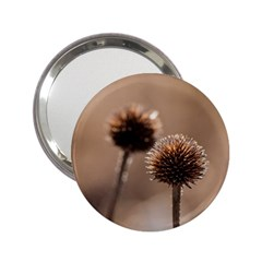 Withered Globe Thistle In Autumn Macro 2 25  Handbag Mirrors by wsfcow