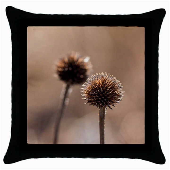 Withered Globe Thistle In Autumn Macro Throw Pillow Case (Black)