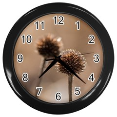 Withered Globe Thistle In Autumn Macro Wall Clocks (black) by wsfcow