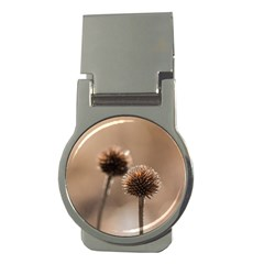 Withered Globe Thistle In Autumn Macro Money Clips (round)  by wsfcow