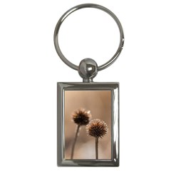 Withered Globe Thistle In Autumn Macro Key Chains (rectangle)