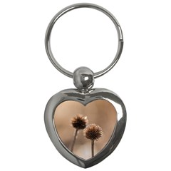 Withered Globe Thistle In Autumn Macro Key Chains (heart)  by wsfcow