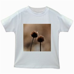 Withered Globe Thistle In Autumn Macro Kids White T Shirts