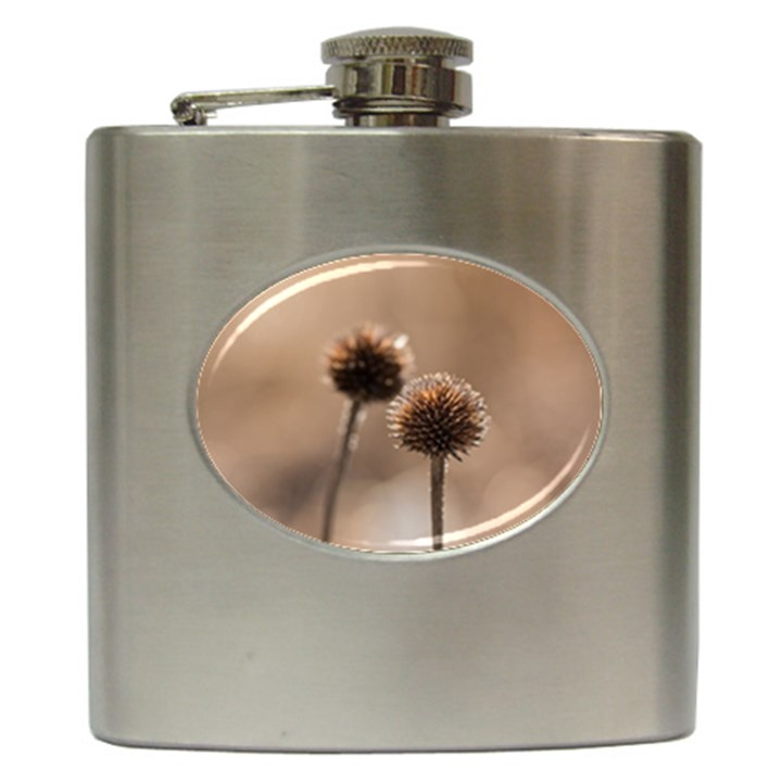 Withered Globe Thistle In Autumn Macro Hip Flask (6 oz)