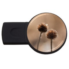 Withered Globe Thistle In Autumn Macro Usb Flash Drive Round (2 Gb)  by wsfcow