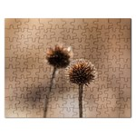 Withered Globe Thistle In Autumn Macro Rectangular Jigsaw Puzzl Front